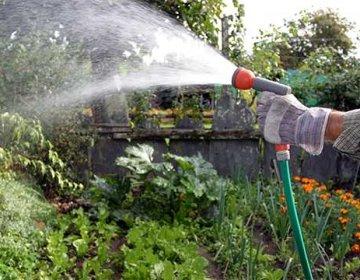 Поливочный шланг для сада и огорода, выбираем лучший