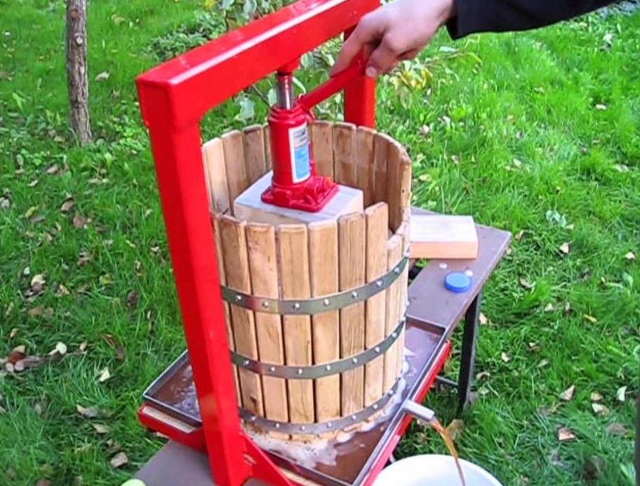 Как из винограда сделать сок в соковыжималке